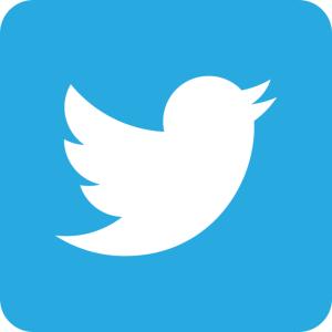 1249827-twitter-logo[1]