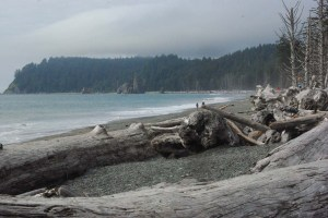 Rialto-Beach-Olympic-Peninsula-WA[1]