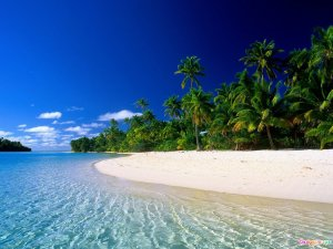 Tropical-Beach-2[1]