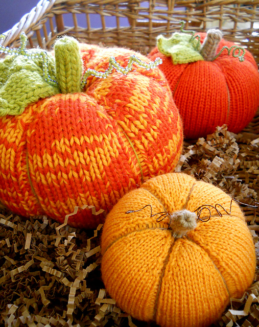 pumpkin_patch-1_medium21